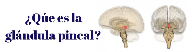 Activación de la Glándula Pineal1
