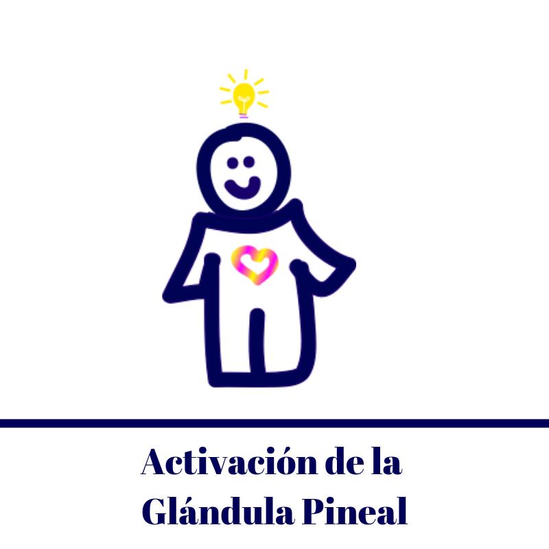 Seminario Activacion de la Glandula Pineal